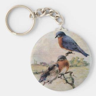 Eastern Bluebirds with Baby Bird Basic Round Button Keychain