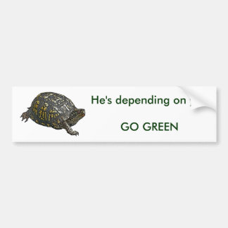 Eastern Box Turtle Coordinating Items Bumper Sticker