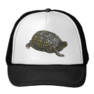 Eastern Box Turtle Coordinating Items Trucker Hat