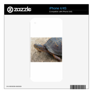 Eastern Box Turtle (Endangered Species) iPhone 4S Skin