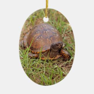Eastern Box Turtle (North Carolina and Tennessee) Ceramic Ornament
