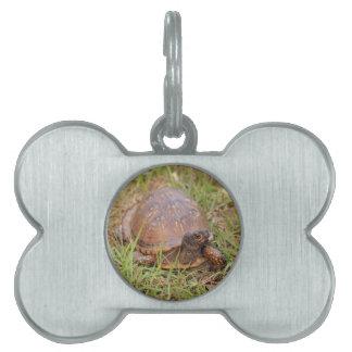 Eastern Box Turtle (North Carolina and Tennessee) Pet Tag