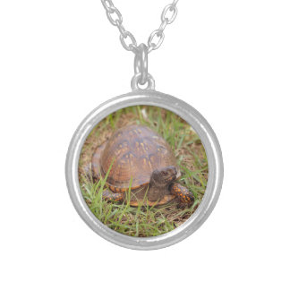 Eastern Box Turtle (North Carolina and Tennessee) Round Pendant Necklace