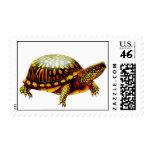 Eastern Box Turtle Postage