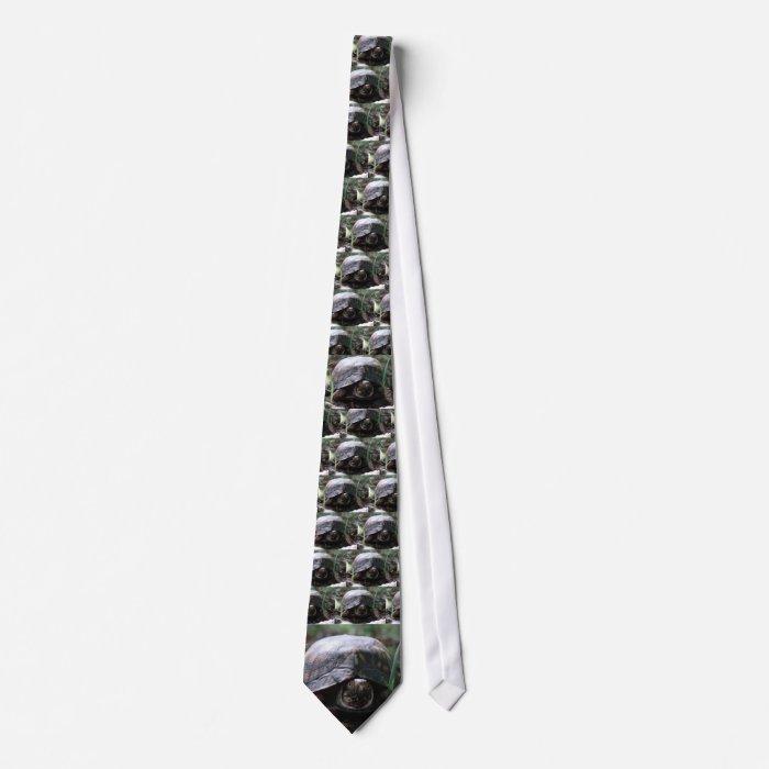 eastern box turtle tie