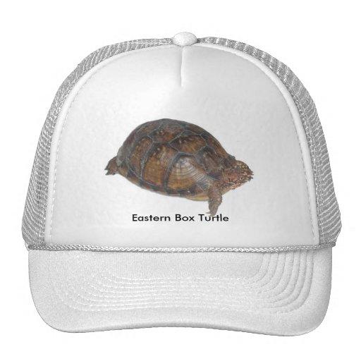 Eastern Box Turtle Trucker Hat