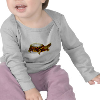 Eastern Box Turtle Tshirts