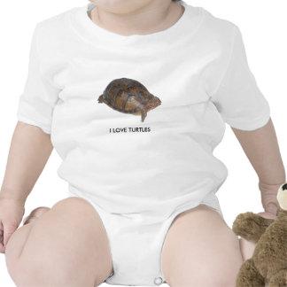 Eastern Box Turtle Shirts
