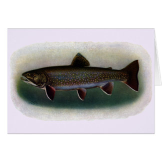 Eastern Brook Trout Painting Card