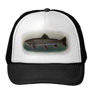 Eastern Brook Trout Painting Mesh Hat