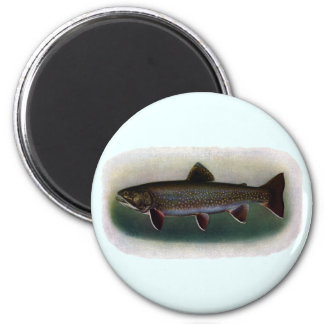 Eastern Brook Trout Painting Magnet