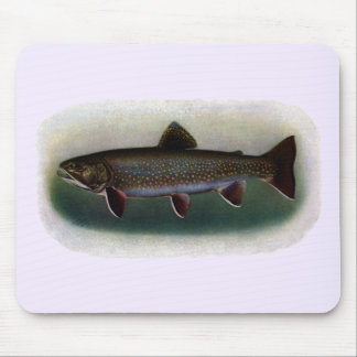 Eastern Brook Trout Painting Mouse Pads