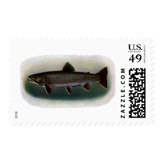 Eastern Brook Trout Painting Postage Stamps