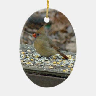 Eastern Cardinal Songbird Christmas Ornament