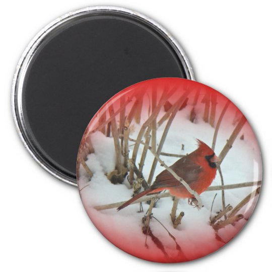 Eastern Cardinal Songbird Coordinating Items Magnet