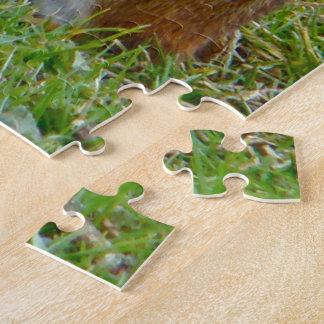 Eastern Chipmunk Jigsaw Puzzles