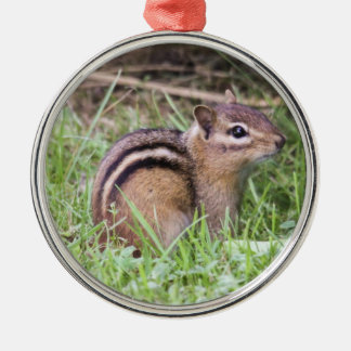 Eastern Chipmunk Metal Ornament