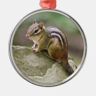 Eastern Chipmunk Metal Ornament