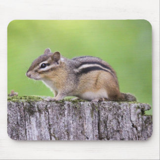 Eastern Chipmunk Mouse Pad