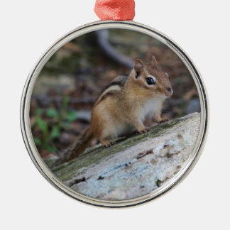 Eastern Chipmunk Round Metal Christmas Ornament