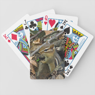 Eastern Chipmunk - Tamias striatus Bicycle Playing Cards