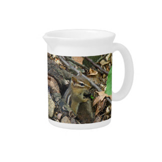 Eastern Chipmunk - Tamias striatus Drink Pitcher
