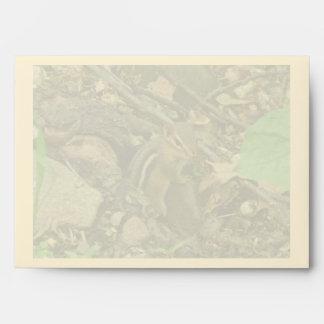 Eastern Chipmunk - Tamias striatus Envelope