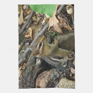 Eastern Chipmunk - Tamias striatus Hand Towel
