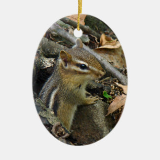 Eastern Chipmunk - Tamias striatus Double-Sided Oval Ceramic Christmas Ornament