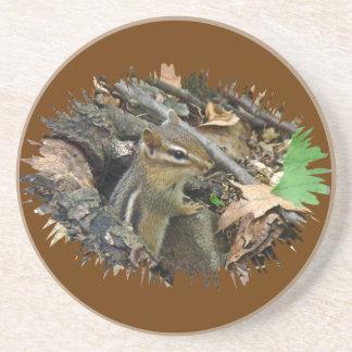 Eastern Chipmunk - Tamias striatus Sandstone Coaster