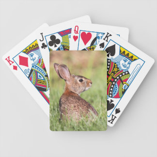 Eastern Cottontail Bicycle Playing Cards