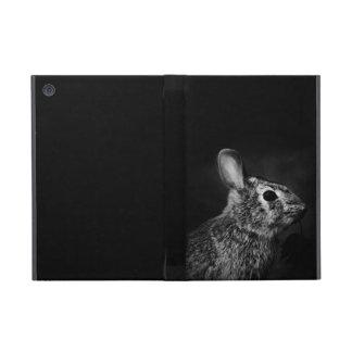 Eastern Cottontail Bunny Rabbit Powis iPad Mini Covers For iPad Mini