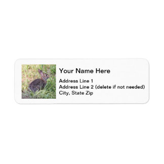 Eastern Cottontail Label