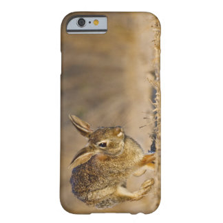 Eastern cottontail rabbit hopping barely there iPhone 6 case