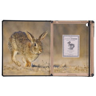 Eastern cottontail rabbit hopping iPad cover