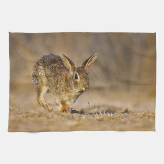 Eastern cottontail rabbit hopping hand towel