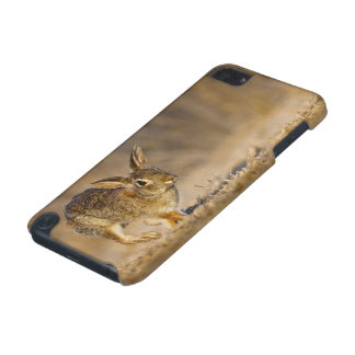 Eastern cottontail rabbit hopping iPod touch (5th generation) cover