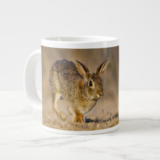 Eastern cottontail rabbit hopping large coffee mug