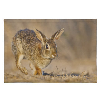 Eastern cottontail rabbit hopping place mat
