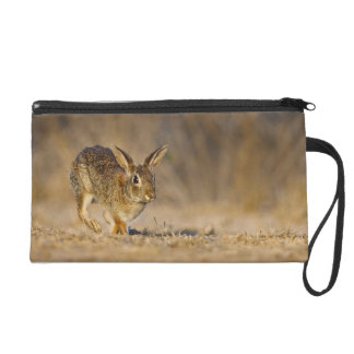Eastern cottontail rabbit hopping wristlet purse