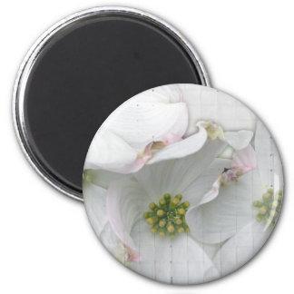 Eastern Dogwood Blossoms - Cornus florida 2 Inch Round Magnet