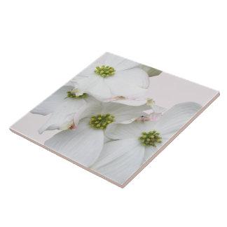 Eastern Dogwood Blossoms - Cornus florida Tile