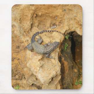 Eastern Fence Lizard Mouse Pad