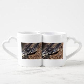 eastern fox snake coffee mug set