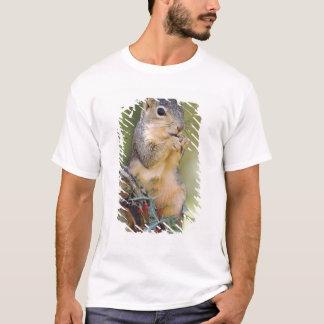 Eastern Fox Squirrel, Sciurus niger, adult T-Shirt