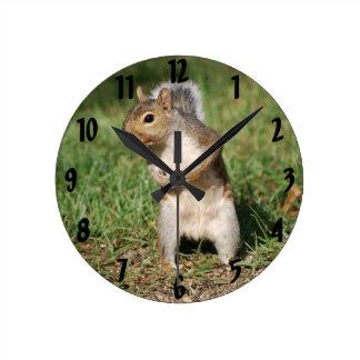 Eastern Gray Squirrel Round Clock