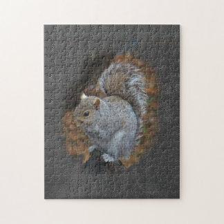 Eastern Gray Squirrel - Sciurus carolinensis Jigsaw Puzzles