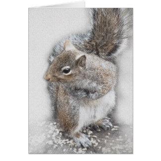 """""""Eastern Gray Squirrel Study"""" Card"""