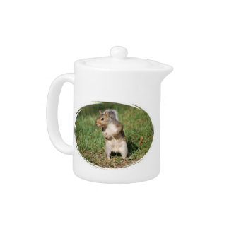 Eastern Gray Squirrel teapot