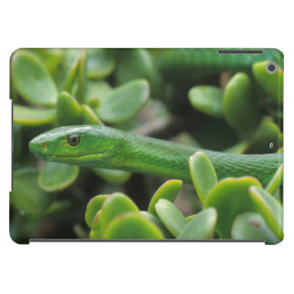 Eastern Green Mamba (Dendroaspis Angusticeps) Cover For iPad Air